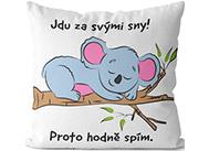 Polštář - Jdu za svými sny